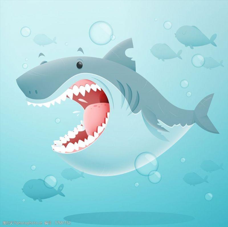 海洋风可爱鲨鱼