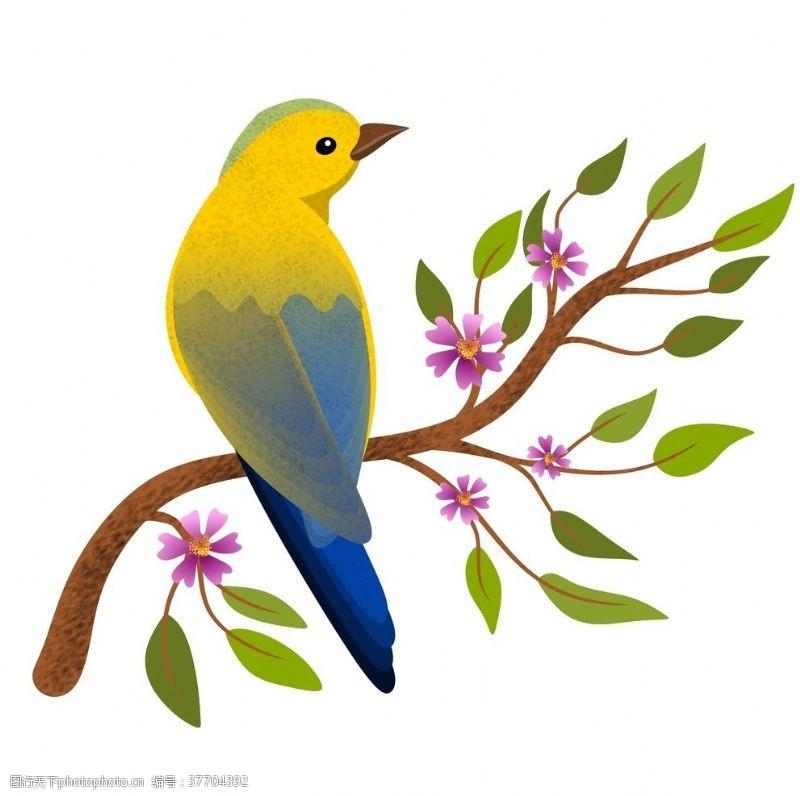 树枝小鸟树枝小鸟