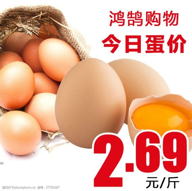 鸡蛋价格今日蛋价