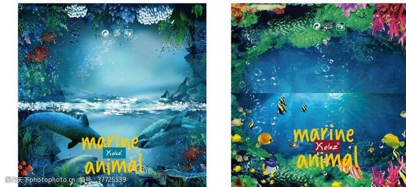 海底珊瑚海洋动物