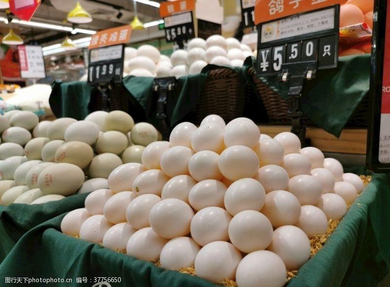 超市鸡蛋鸽子蛋