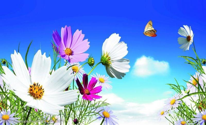 摄影图库蓝天白云自然风景