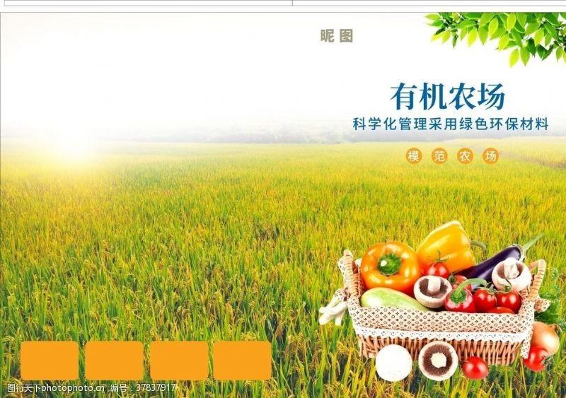 绿色食品农业企业封面