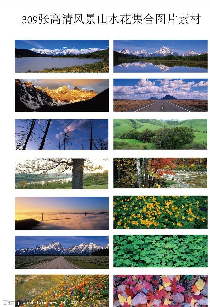精美素材309张高清风景山水花集合