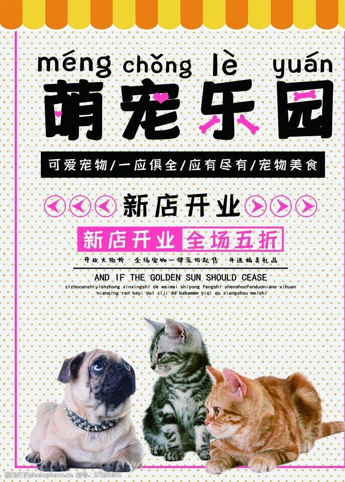 广告设计宠物