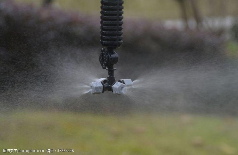 浇灌农业灌溉微喷头效果图