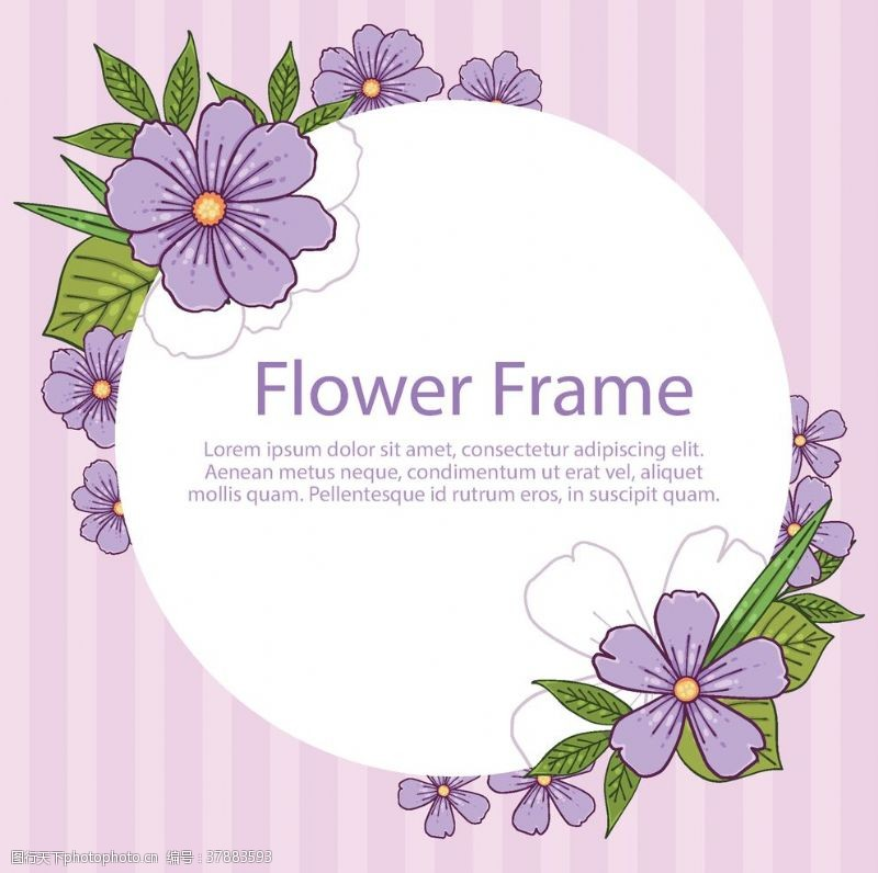 設計花紋花邊素材