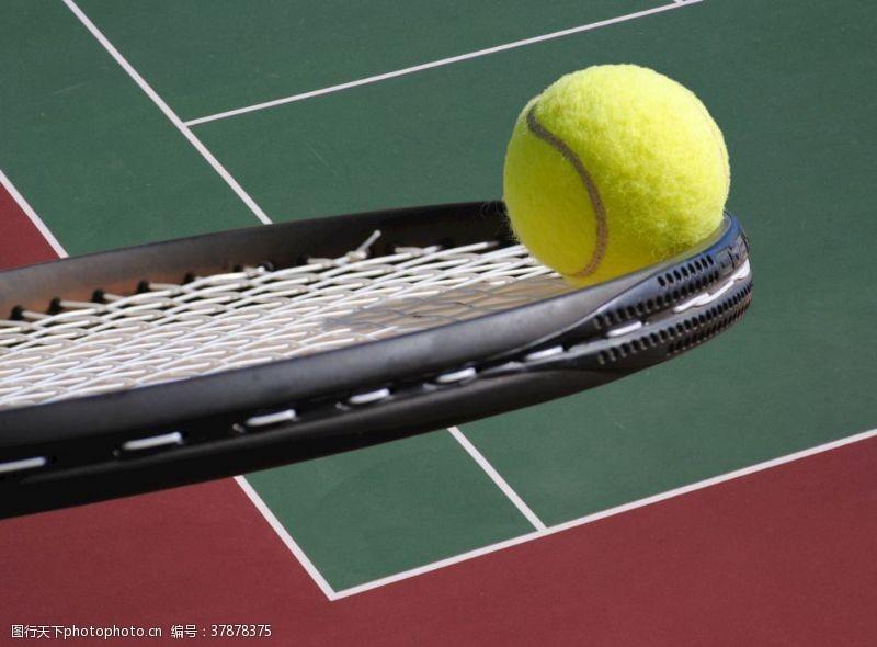 竞技体育网球