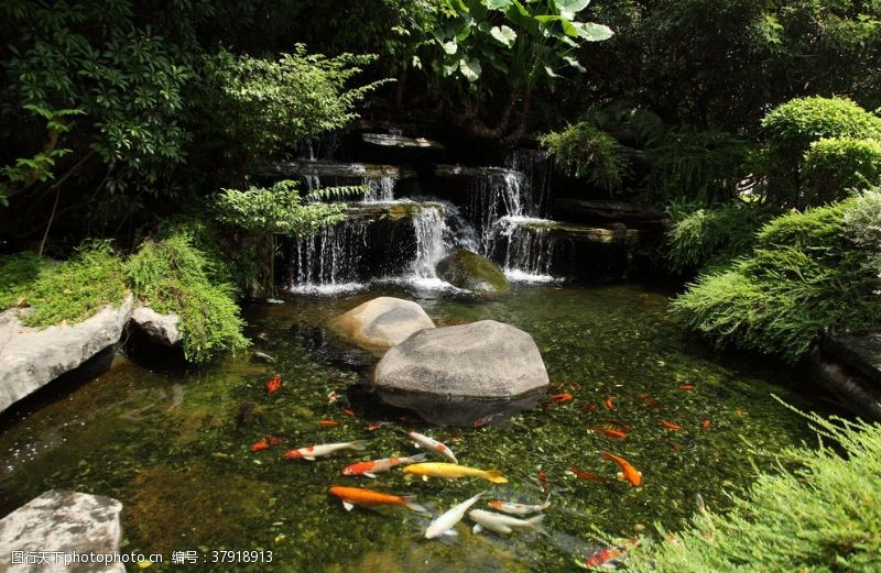 景观设计园林景观