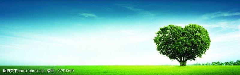 草地风景画