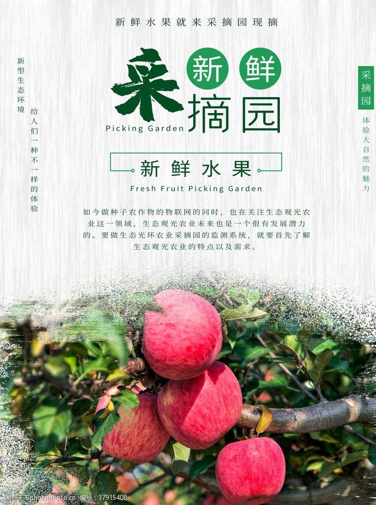 蔬果海报摘水果
