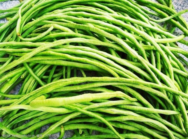 夏季蔬菜缸豆