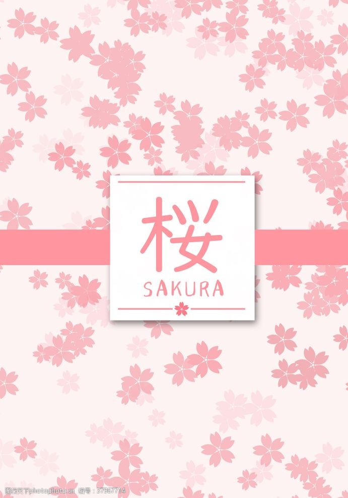 樱花sakura