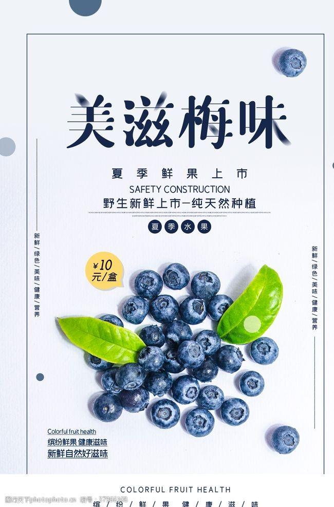 营养蓝莓水果