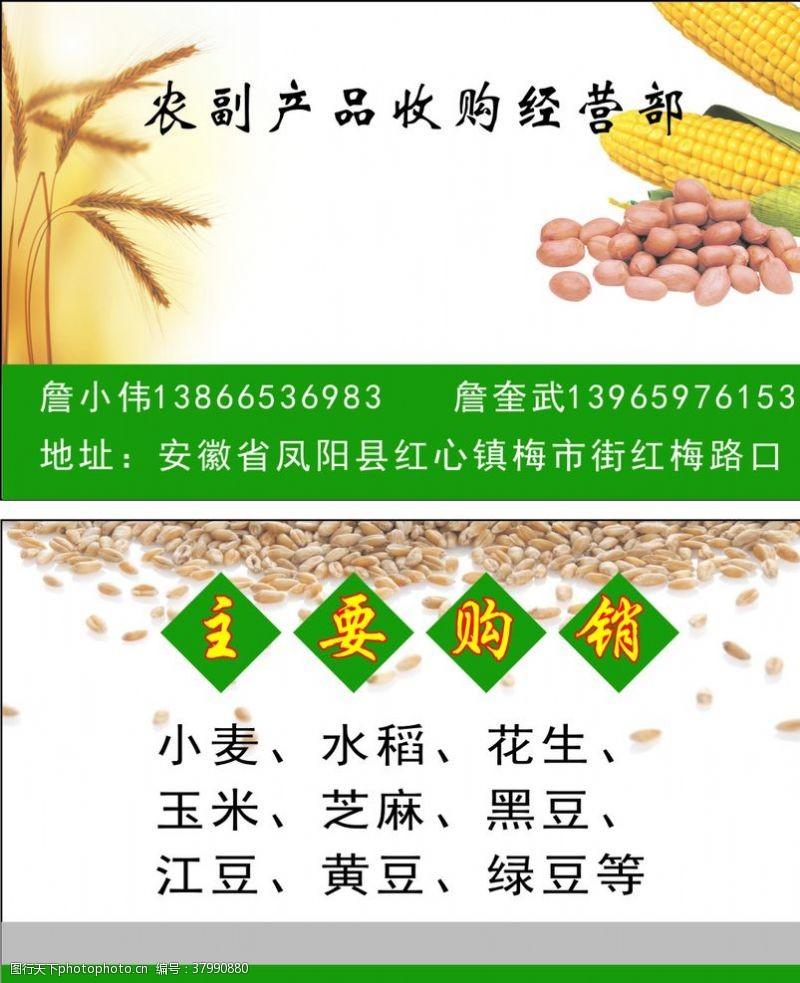 小麦农副产品