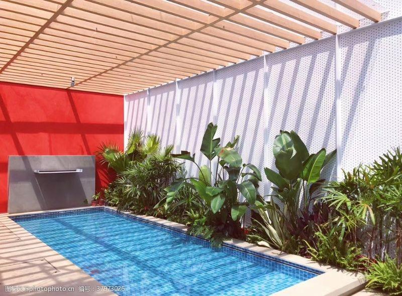绿植游泳池