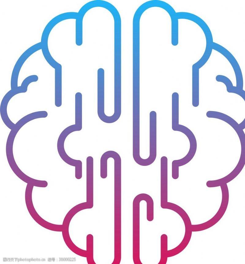 大脑神经大脑