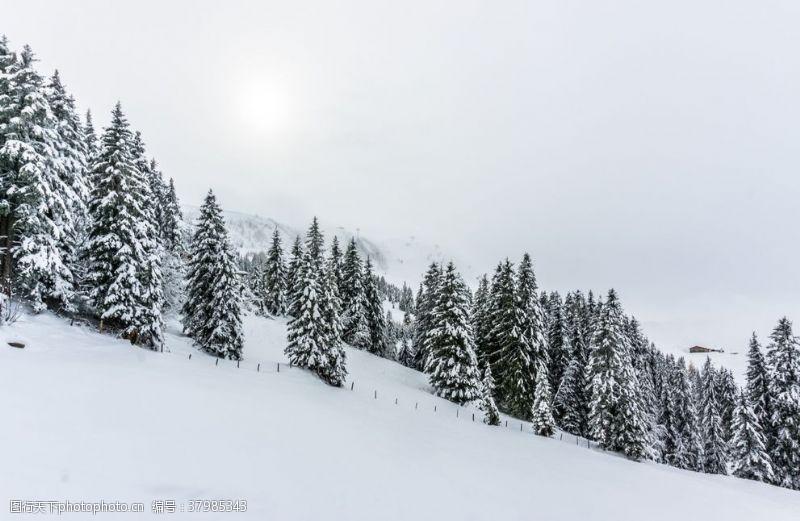 自然风景滑雪场
