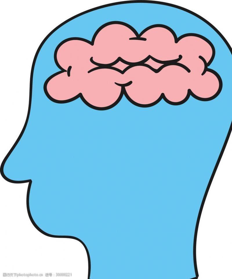 大脑神经人脑