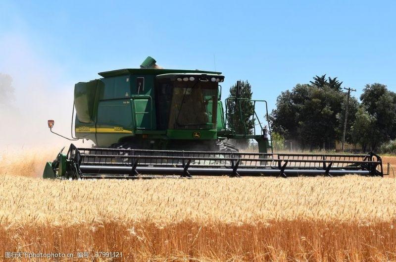 小麦收割机