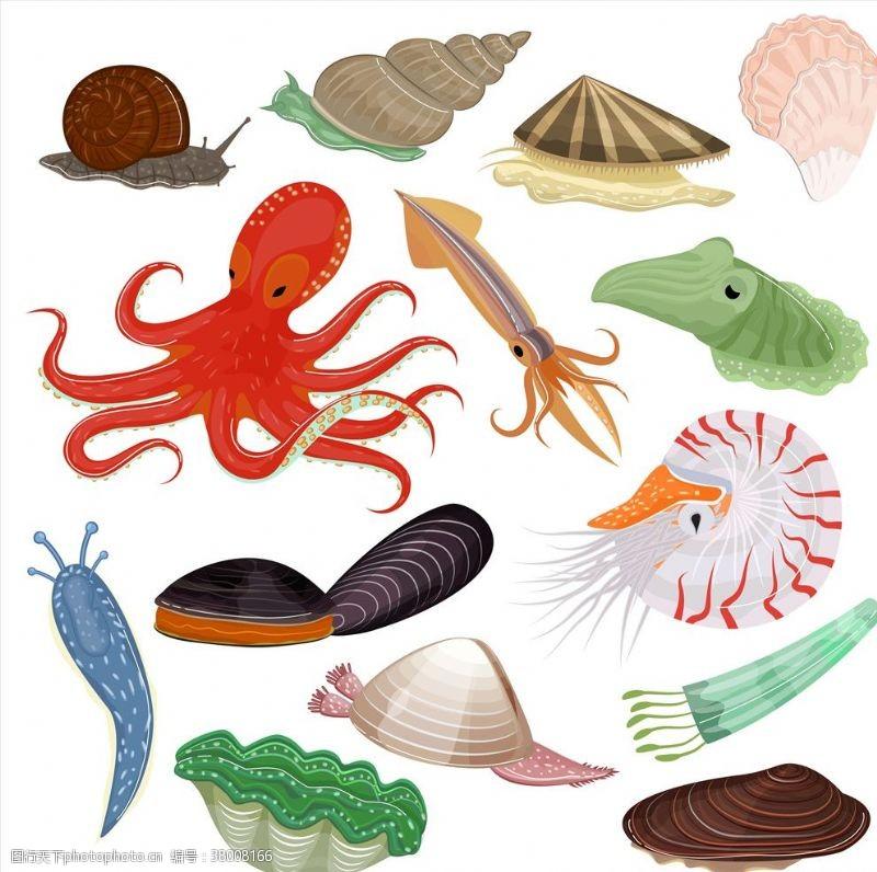 海底珊瑚海底动物