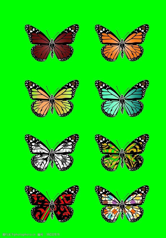 设计蝴蝶展翅