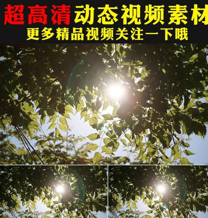 环保广告野草青草叶子空镜头视频素材