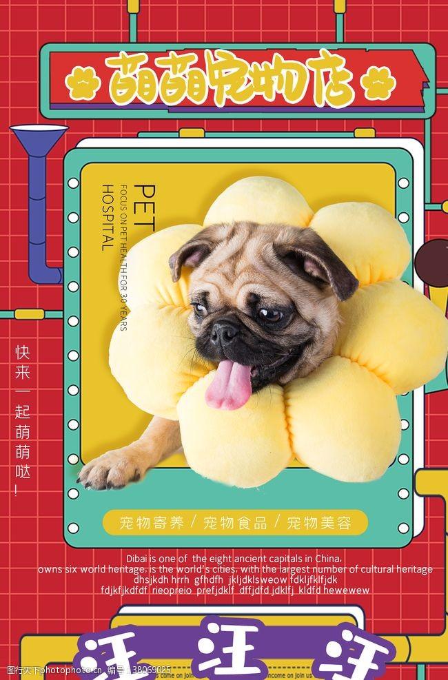 宠物卡片萌萌宠物店