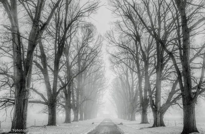 农村旅行路