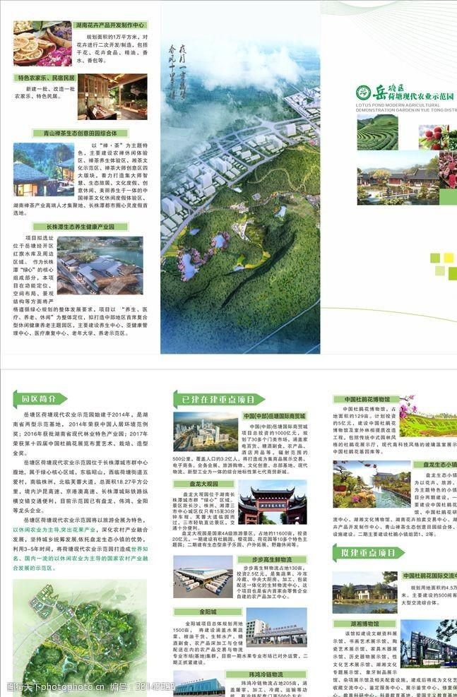 绿色折页农业示范园三折页