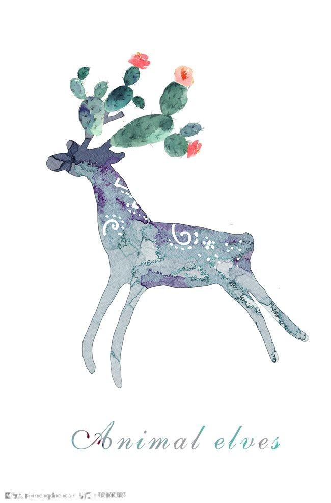 北欧素材植物装饰画