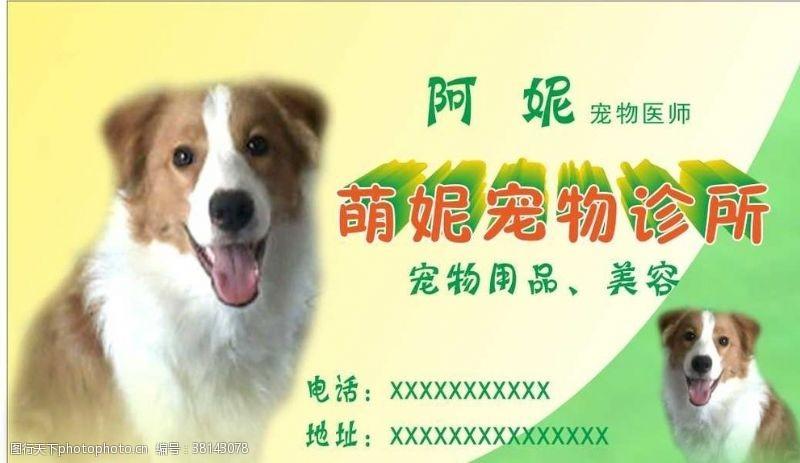 宠物名片卡片宠物名片卡片证卡宠物诊所