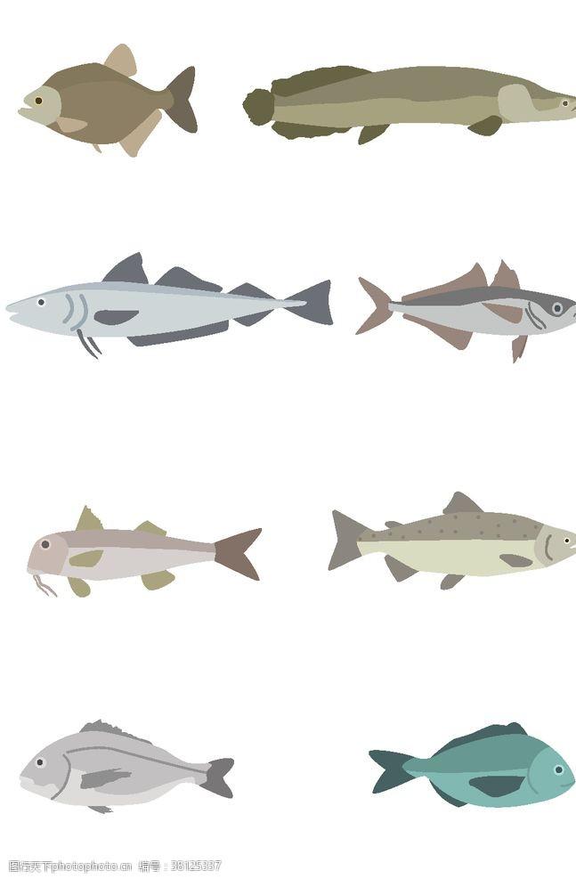 经销深海鱼类
