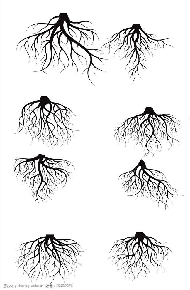 植物剪影树木剪影