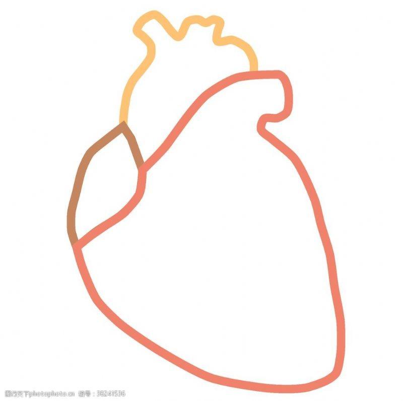 美容图标医疗人体器官