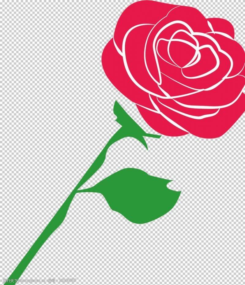 粉玫瑰鲜花素材