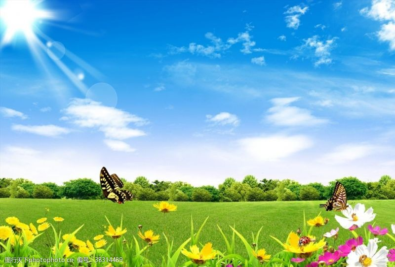 春季背景春天背景