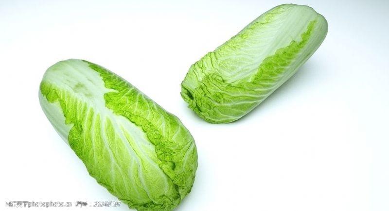 3d作品大白菜