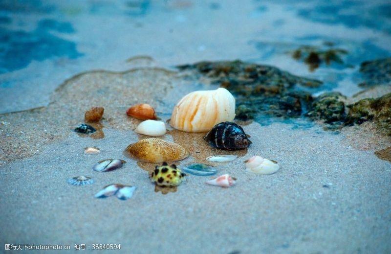 山川海水贝壳