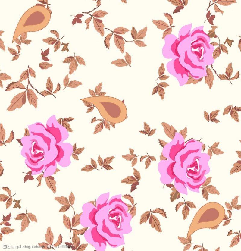 粉玫瑰玫瑰花