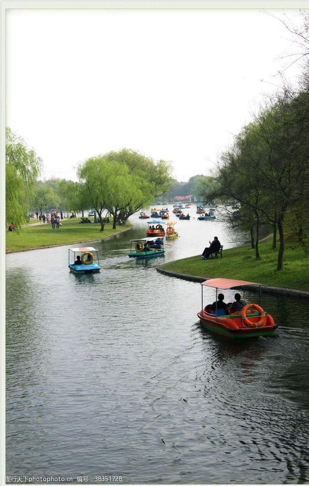 公园湖泊上海共青森林公园