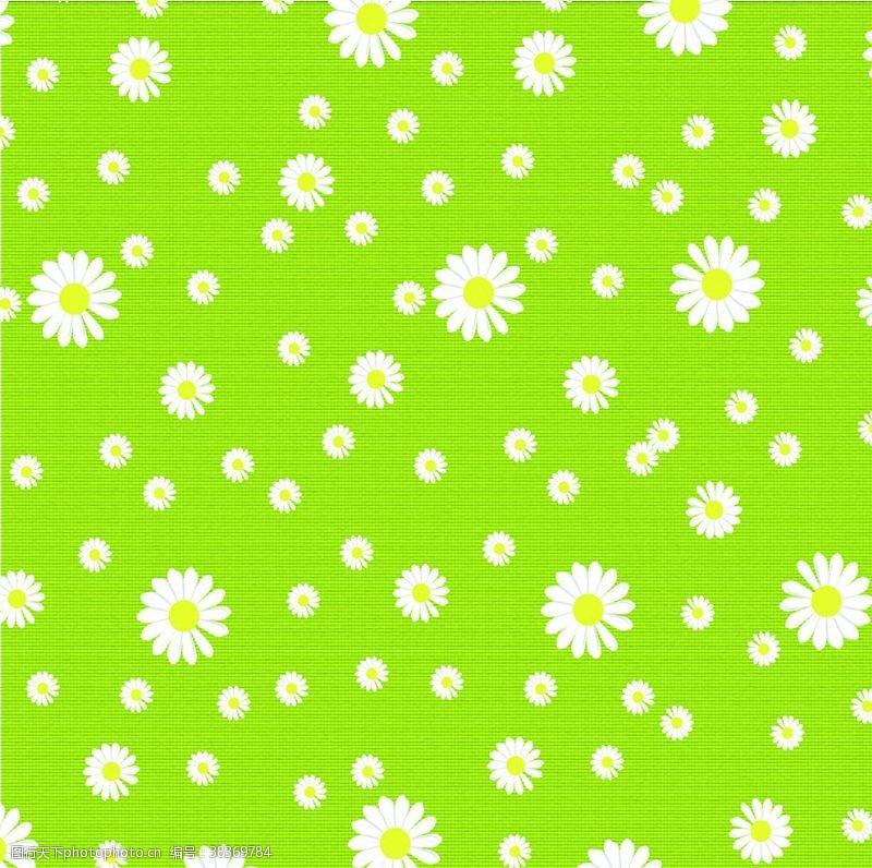 春季背景春季小雏菊背景桌布