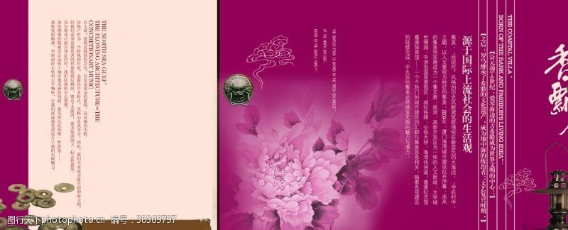 中国风设计牡丹花
