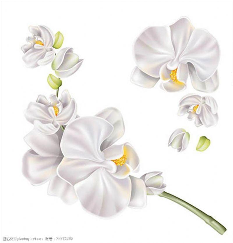矢量图 绿叶大树花朵水彩鲜花花朵图片