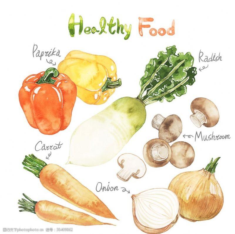 蔬菜手绘美食海报