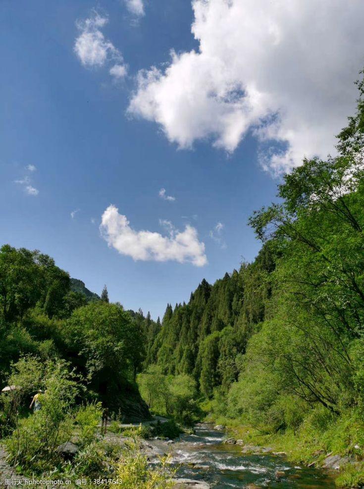 小溪山林河流