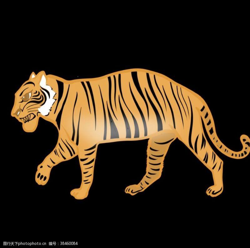矢量小插图手绘老虎