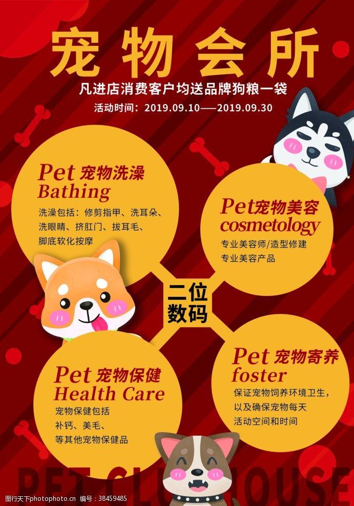 宠物之家宠物宣传单