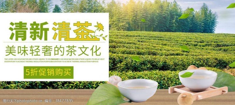 佛山新茶清新新茶