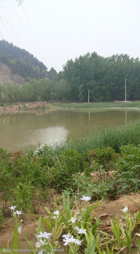 游人池塘边